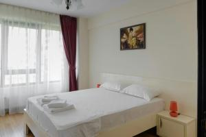 REZapartments by the Park A11, Apartments  Iaşi - big - 13