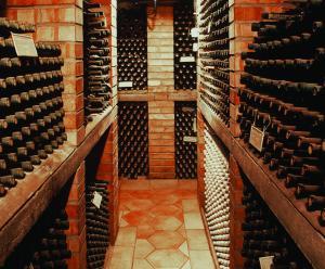 Vinný sklep u Chytilu