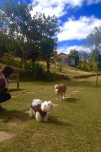 Canto da Lala Chales, Guest houses  Pouso Alto - big - 26
