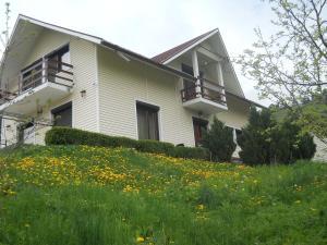 Casa Irina, Ville  Piatra Neamţ - big - 77
