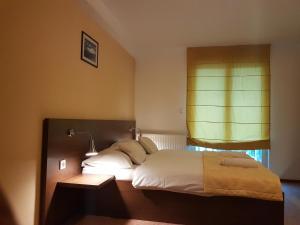 Hotel Ahar - фото 7