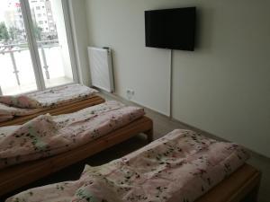 Pokoje gościnne - Noclegi, Priváty  Września - big - 2