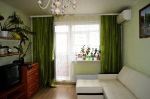 Apartment on Novokosinskaya