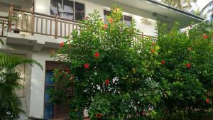 Unawatuna Apartments, Apartments  Unawatuna - big - 130
