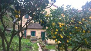 Case Vacanze Garibaldi, Vily  Monterosso al Mare - big - 64
