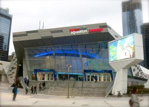Luxury Furnished Corporate Suite in Downtown Toronto, Ferienwohnungen  Toronto - big - 22