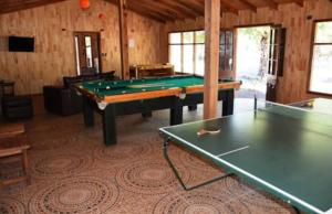 Rumbo Antuco, Lodges  El Abanico - big - 4