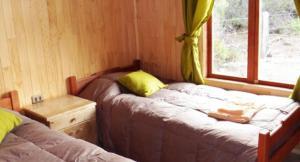 Rumbo Antuco, Lodges  El Abanico - big - 19