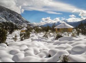 Rumbo Antuco, Lodges  El Abanico - big - 18