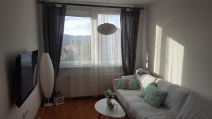 Apartment Sarajevo - фото 4