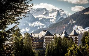 The Alpina Gstaad - Hotel