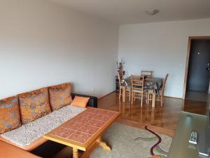 Apartment Limanovic - фото 14