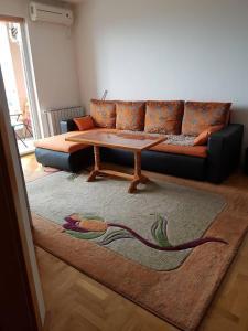 Apartment Limanovic - фото 12