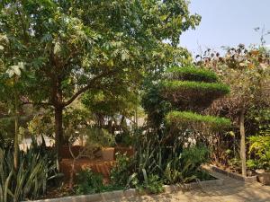 Keba Guest House, Penziony  Mahalapye - big - 3