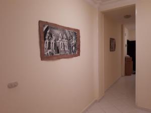 Oazis resort Hurghada, Apartments  Hurghada - big - 9