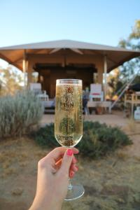 Squeakywindmill Boutique Tent B&B - , Northern Territory, Australia