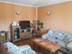 Apartment Malina - фото 3