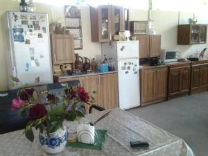 Vacation Home U Morya, Case vacanze  Alakhadzi - big - 14