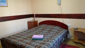 Отель Desna KUT - фото 13