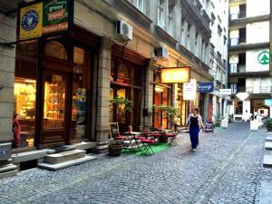 Living Budapest Apartment Semmelweis(Budapest)