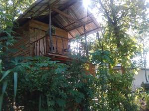Angry Birds Tree house, Homestays  Habarana - big - 1