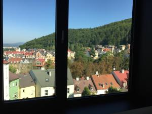 Triplex Residence, Lux-appartment in the central part, Apartments  Karlovy Vary - big - 26