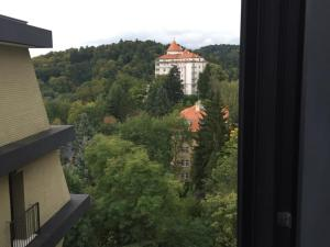 Triplex Residence, Lux-appartment in the central part, Apartments  Karlovy Vary - big - 33