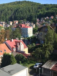 Triplex Residence, Lux-appartment in the central part, Apartments  Karlovy Vary - big - 29