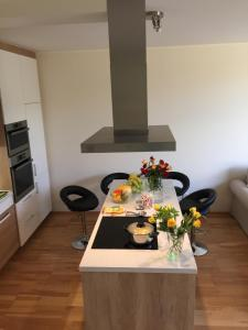 Triplex Residence, Lux-appartment in the central part, Apartments  Karlovy Vary - big - 16