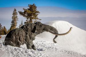 The Summit 213, Prázdninové domy  Mammoth Lakes - big - 19
