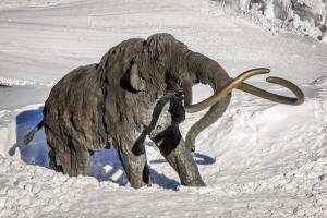 The Summit 213, Prázdninové domy  Mammoth Lakes - big - 2