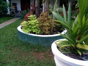 Bangalawa Resort, Guest houses  Habarana - big - 29