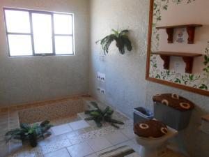 Quinta Cobos, Privatzimmer  Tequisquiapan - big - 26