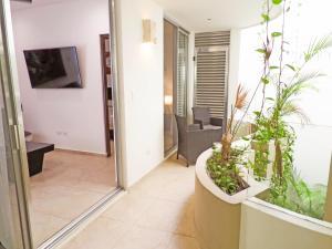 Skyline 204, Apartments  Playa del Carmen - big - 21