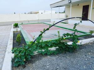 Aliz farm house, Agriturismi  Barka - big - 17