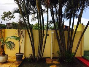 Pousada Solar da Paz, Vendégházak  Tibau do Sul - big - 17