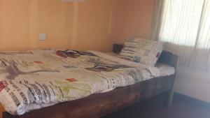 Villa Tafika Lodge, Lodges  Yangala - big - 10