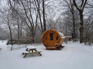 AZUR Waldcamping Auwaldsee, Üdülőközpontok  Ingolstadt - big - 37