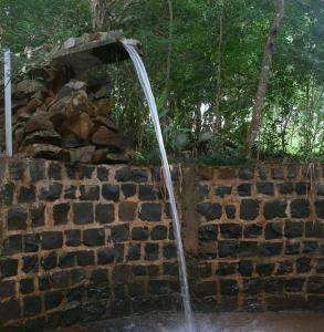 Pousada Parque das Gabirobas, Farm stays  Macacos - big - 37