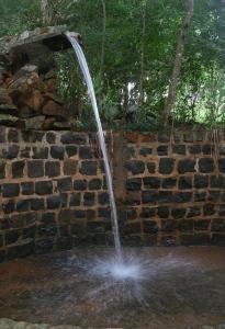 Pousada Parque das Gabirobas, Farm stays  Macacos - big - 23