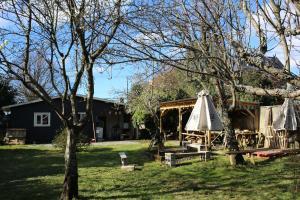 Casa Vieja Hostel & Camping, Penziony  Puerto Varas - big - 13