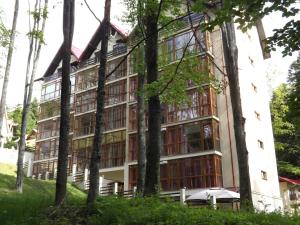 Alpin Residence - Apartment - Sinaia
