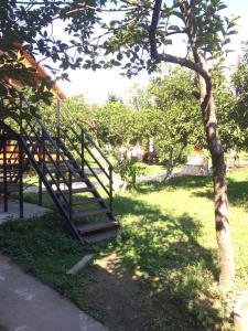 Guest house Zolotoy bereg, Affittacamere  Pizunda - big - 29