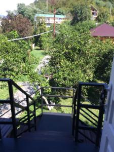 Guest house Zolotoy bereg, Affittacamere  Pizunda - big - 22