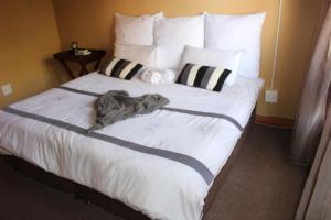 Epozini guest house, Vendégházak  Bloemfontein - big - 2