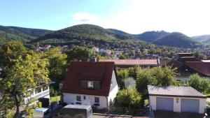 Villa Moma, Prázdninové domy  Bad Harzburg - big - 31