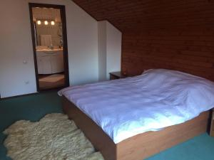 Villa Mara, Vily  Sinaia - big - 14