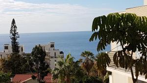 Casa Branca Apartment, Ferienwohnungen  Funchal - big - 1