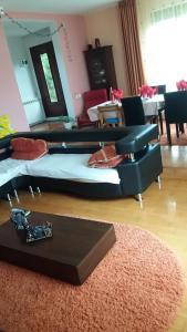 Casa Irina, Ville  Piatra Neamţ - big - 102