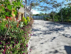 U Norika i Susanny Guest House, Penziony – hostince  Alakhadzi - big - 22